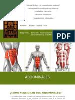 abdominales tipos