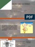 Porfidos de cobre.pptx