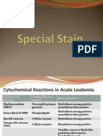 Hematology Special Stain