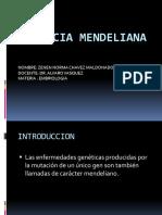HERENCIA MENDELIANA.pptx