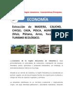 Economía de La Región Amazónica
