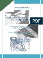 Cyberdelito.pdf