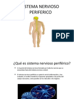 trabajo de neurociencias 1.pptx