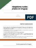 Información sobre el Trabajo Rural en Uruguay.pdf