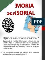 La Memoria tipos y funciones