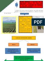 explotacion agricola.ppt