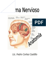 MODULO SISTEMA NERVIOSO- JORGE BASADRE SEMANA 4.doc