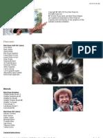 How to - Raccoon