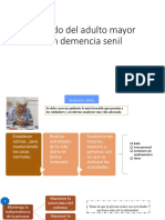 Cuidado Del Adulto Mayor Con Demencia Senil-Manejo Familiar Del Pacienite Con Alzheimer