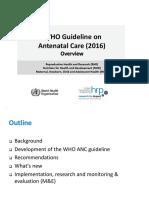 ANC_guideline-presentation.pptx