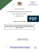 Badi_Mohammed.pdf