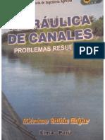 LIBRO DE PRÁCTICA VILLON -Fluidos II.PDF
