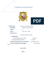 Informe 3 Fisicoquimica - Densidad de Solidos y Liquidos