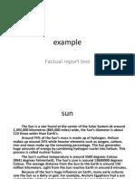 Example Factual Report