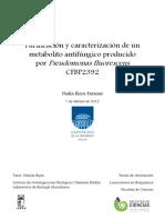 uy24-15529.pdf