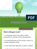 nitrogen cycle.pptx