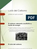 Ciclo-del-carbono.pptx