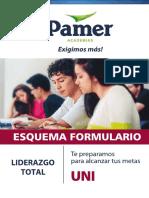 ESQUEMA FORMULARIO PAMER