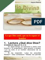 Lectio XXVII B