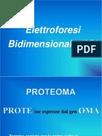 Elettroforesi 2D.pdf
