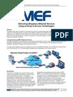 Access_WG_Whitepaper_FINALv3
