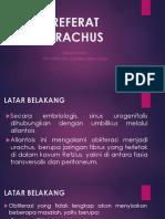 ppt URACHUS