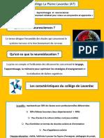 Apprentissages Et Neurosciences « Connaître Son Fonctionnement Cérébral Pour Mieux Se Comprendre Et Apprendre » Collège La Plaine Lavardac (47)