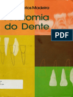 Anatomia Do Dente - Madeira 5ED