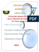 Metodologia Proyecto Final