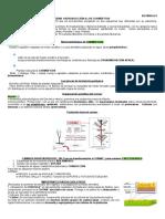 Botánica II apuntes total.pdf
