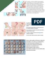 anticonseptivos