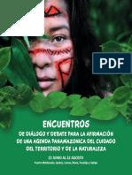 Cartilla Gráfica de Encuentros Agenda Panamazónica