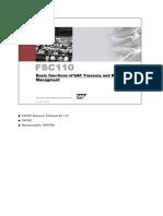 SAP Treasury_Risk Management