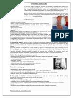 Osteomielita La Copil
