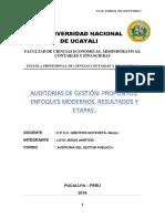 Monografia Sobre Auditorias de Gestion