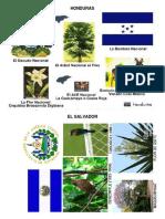 simbolospatriosdecentroamerica-150705203152-lva1-app6891 (1).pdf