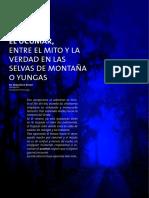 El Ucumar Entre El Mito y La Verdad en Las Selvas de Montana o Yungas