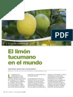 avance-38-2-limon-2017.pdf
