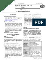 SO-ER-5-Trabajo práctico sociologia organizaciones. enfermeria-colegio militar.pdf