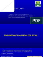 Roya Presentacion