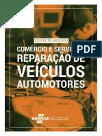 Reparação de veículos automotores.pdf