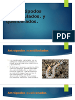 exposicion-de-zoologia.pptx