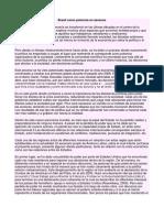 Brasil Como Potencia en Ascenso
