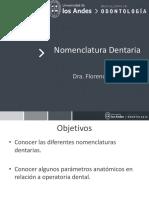 3.Nomenclatura Dentaria 2017