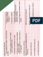 Coração - Capitulo-10.pdf