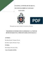 Regímenes Económicos Del Matrimonio y La Unión de Hecho en Nicaragua