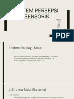 Sistem Persepsi Sensorik Kel. 1