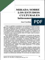 Una mirada sobre los estudios culturales latinoamericanos