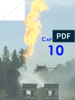 Cap. 10 - Equipamiento de Superficie.PDF