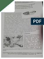 FORMULACIÓN - PARALEER - TOPYTOP